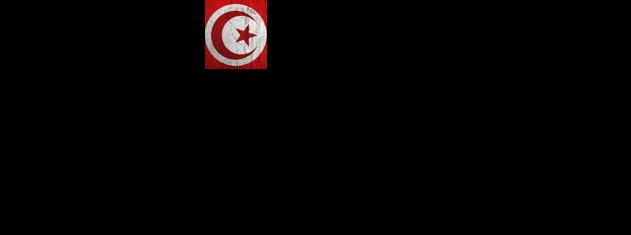 Гид-путеводитель по Тунису